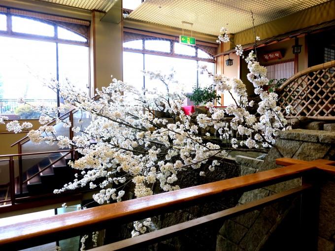 富士山の見える温泉鐘山苑7|原田陽平旅行記