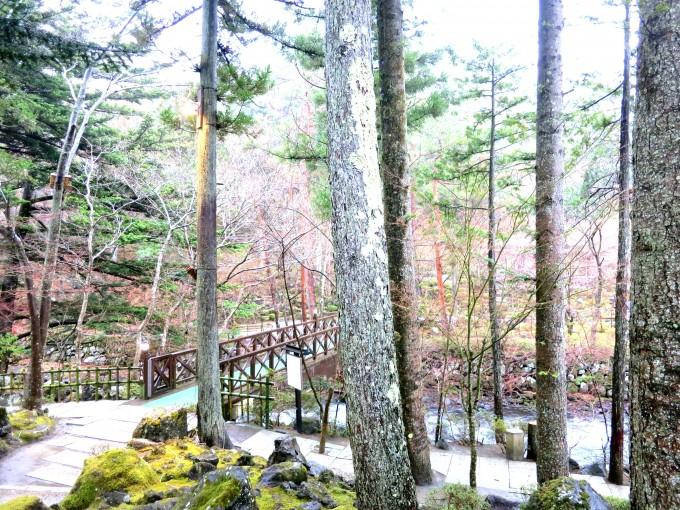 富士山の見える温泉鐘山苑9|原田陽平旅行記
